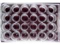 测定单克隆抗体的效价的操作步骤:ELISA法