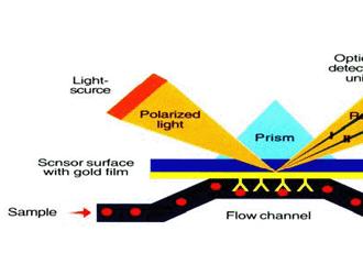 表面等离子共振技术(SPR)综述