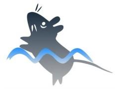 上海欣软SuperFst高通量强迫游泳实验系统