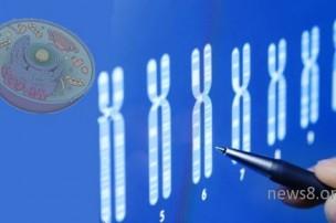 CRISPR精品操作指南:如何精确有效完成实验!