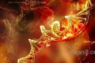 基因测序:中国已成为继美国后第二基因大国