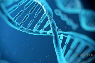 【央视分析】创业板迎龙头企业,基因检测未来走势如何?