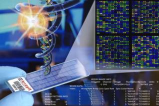 """基因检测解码""""生命说明书"""" 全球竞跑基因数据库"""
