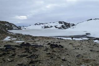 南极神秘微生物揭示病毒来源