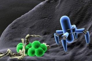 纳米医学的潜力