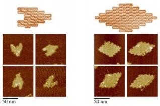 Science:重大进展!开发出单链DNA/RNA折纸术