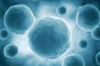 安捷伦收购Luxcel Biosciences 扩充细胞分析产品系列