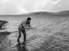 海洋DNA有助生物学研究