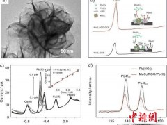 纳米复合材料可高敏感测水中重金属铅
