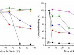 纳米抗体在小分子检测中的应用
