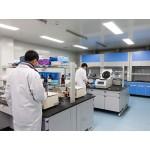 植物基因工程服务