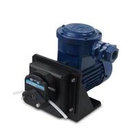 FG600S-A3 交流电机防爆型蠕动泵
