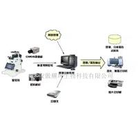 ZL-PCLAB-IA医学图像分析系统